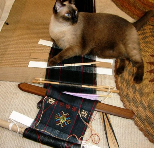 cat on backstrap loom Bhutan