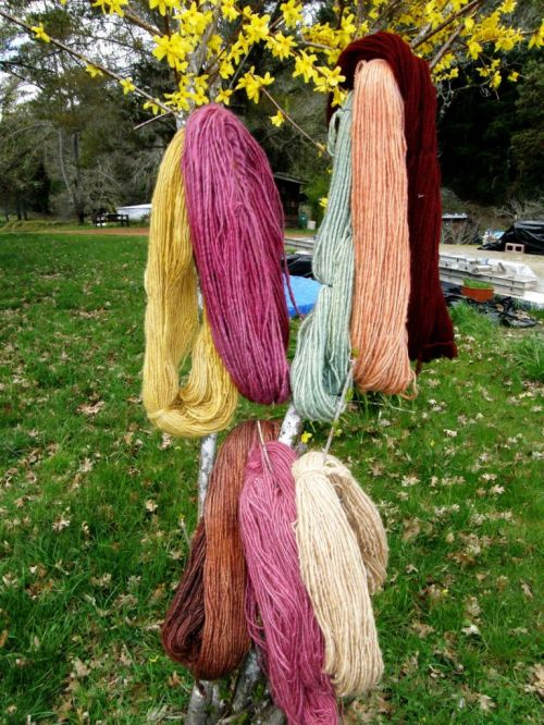 handspun yarn tree at Janets