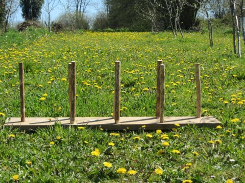 warping board in dandelions