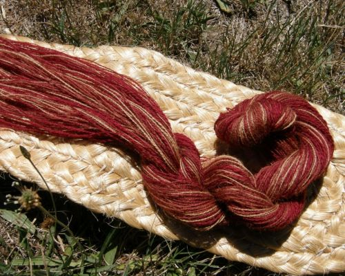 Some of Janet's beautiful naturally dyed handspun yarn which was destined for warp-faced weaving.