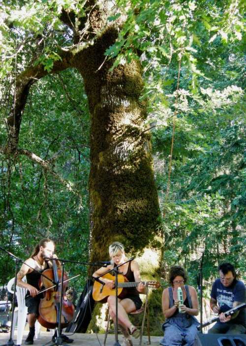 """Music under the big ol' white oak...the annual""""Strawberry Jam"""" at Janet's place. I hooked up a warp to my toe, wove and enjoyed the music."""