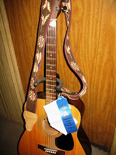 hummingbird_guitar_strap_002_medium