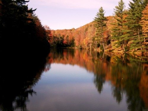 Vermont foliage over lake