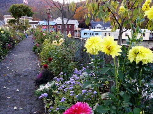 bridge of flowers next to vavstuga