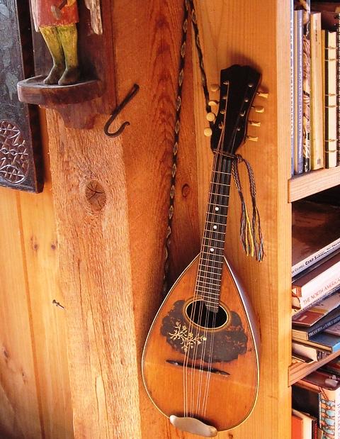 LLausanne's mandolin strap