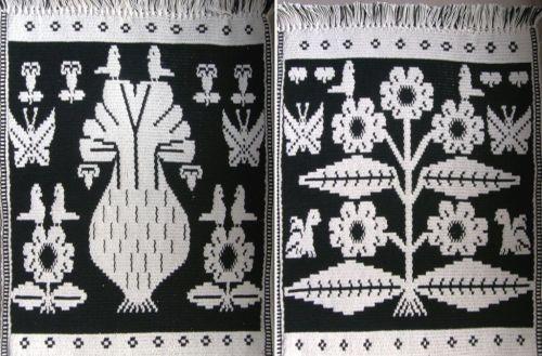 Guarani Moisy technique