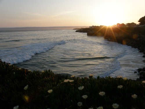Walking the paths of West Cliff Santa Cruz was a wonderful way to unwind after a day of teaching. We watched surfers, pelicans and sea otters at play in the light of the setting sun.