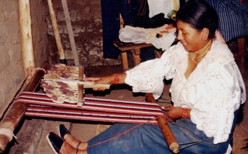 fluffing the woven fabric with thistles Ecuador
