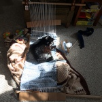 liza backstrap rug
