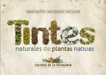 natural dyes patagonia