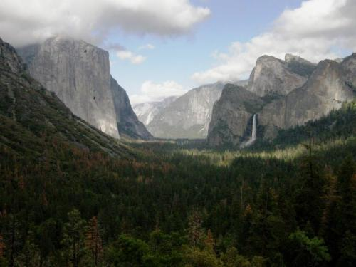 I love the two soaring birds against the face of El Capitan.