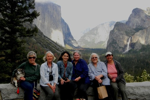 the weaving gang at yosemite